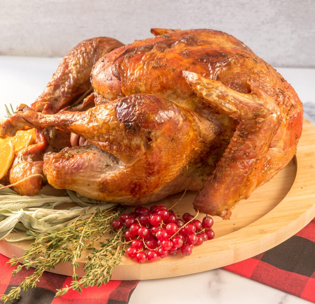 side view of full turkey on platter with red gingham napkin